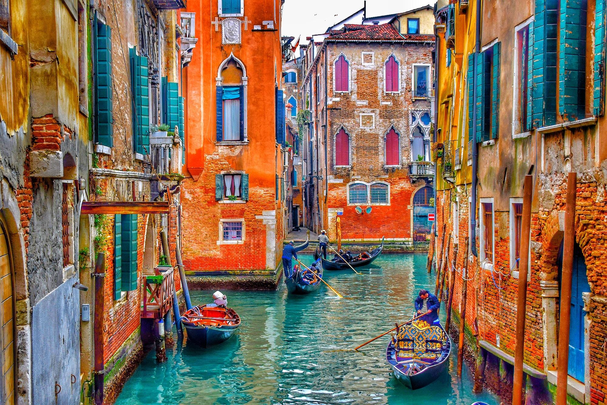 Venice SEO Company, Venice SEO Specialist, Acme web agency